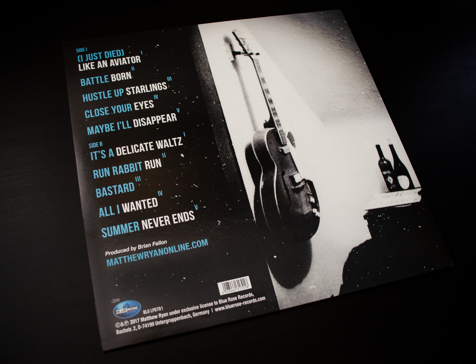 Matthew Ryan Hustle Up Starlings Back Cover Vinyl