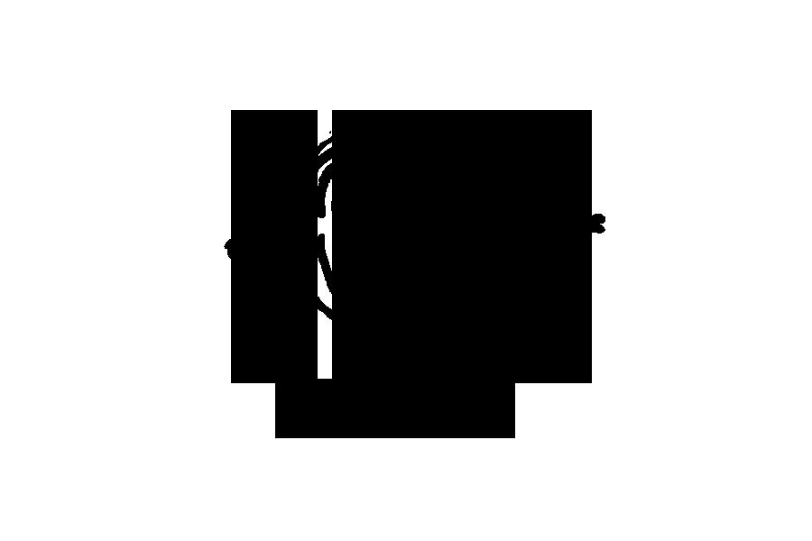 Todd May Logo